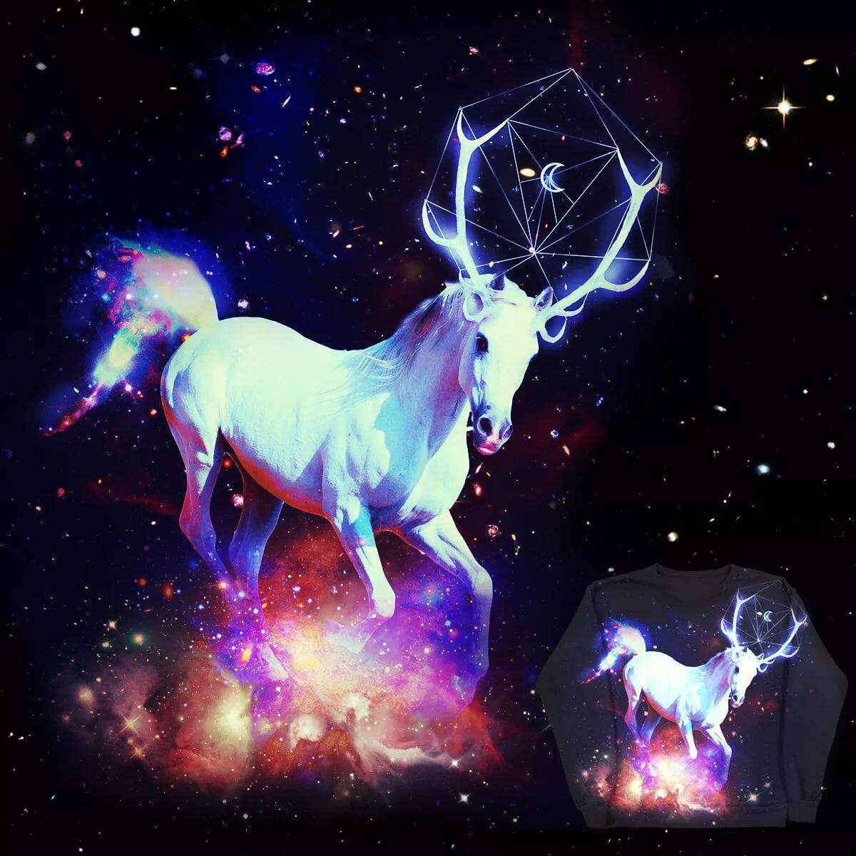 помощью картинки лошадь космос что