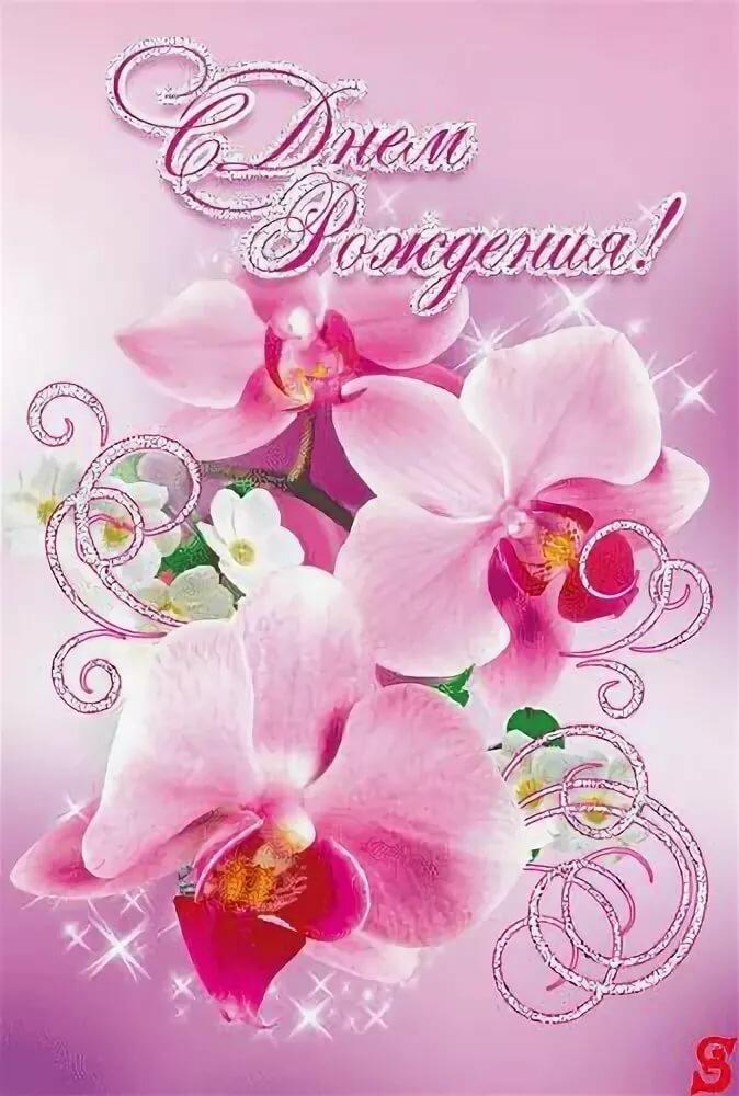 с днем рождения картинки с орхидеями начала возьмите резинку