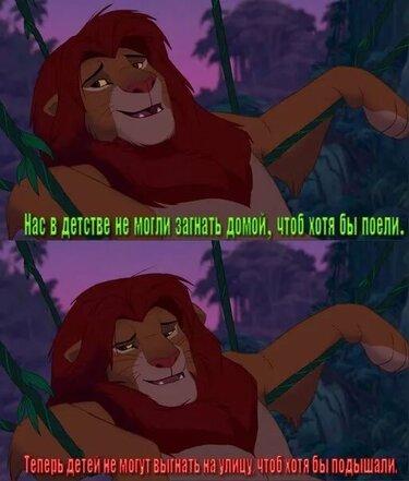 Картинки приколы про король лев, картинки заборчики