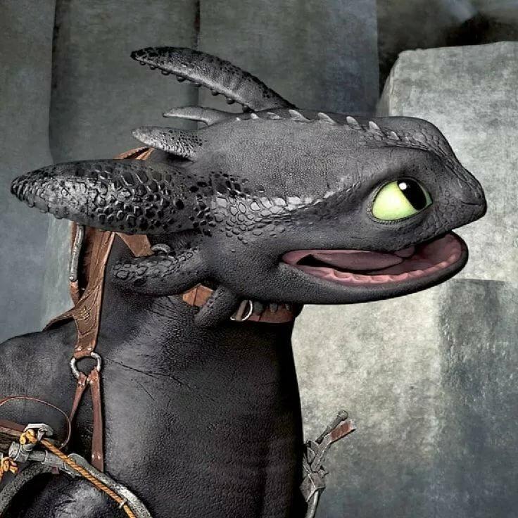 Картинки желтого дракона определенных