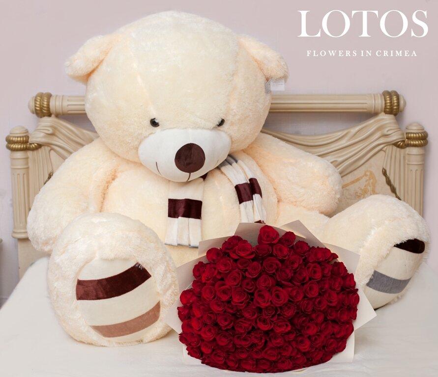 Картинки с медвежатами и с розами