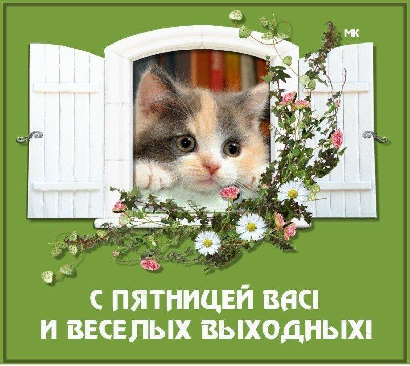 Поздравительные открытки пятница, картинки узбек
