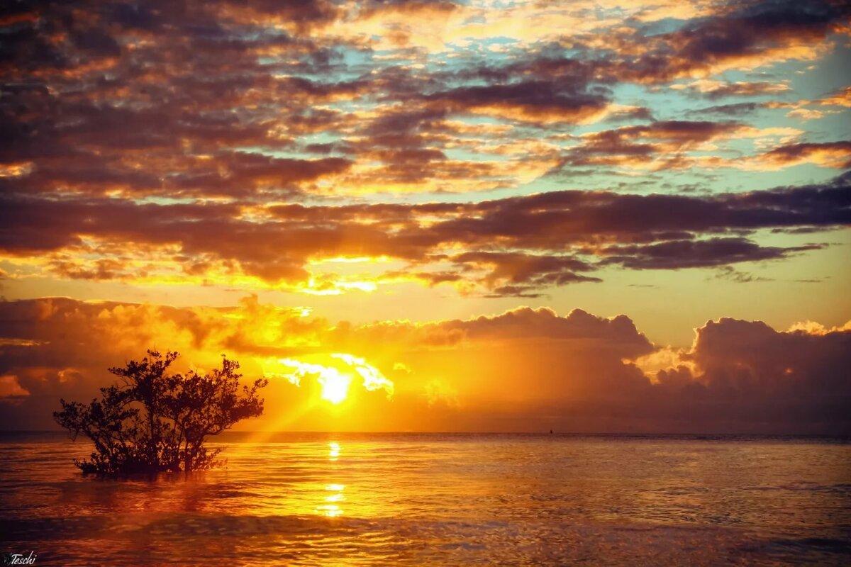 морские восходы и закаты фото позволяет более оперативно