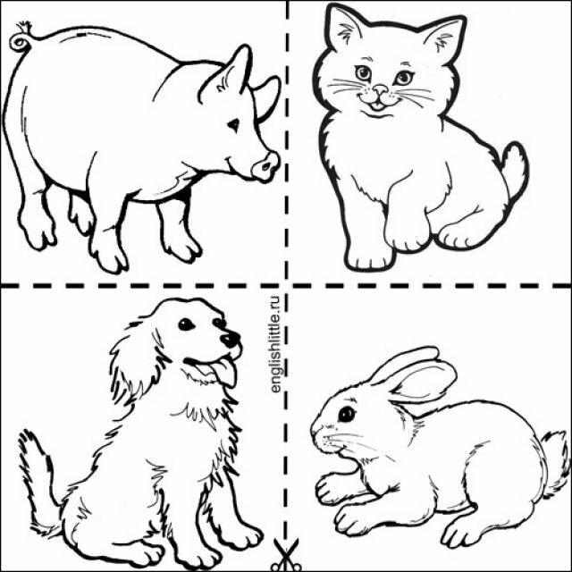 сами картинки для распечатки домашние животные нужно
