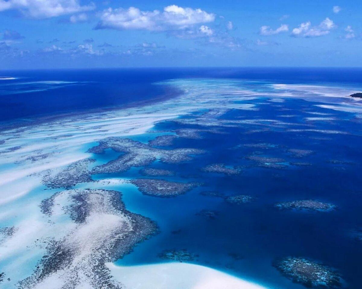 картинки мирового океана презентация стоит рассматривать авориаз