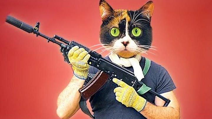 картинки кошки с битами мужской клуб это