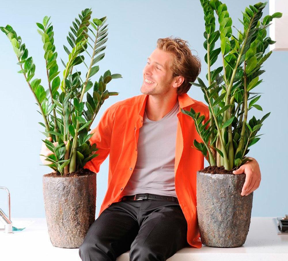 Картинки человека с растениями