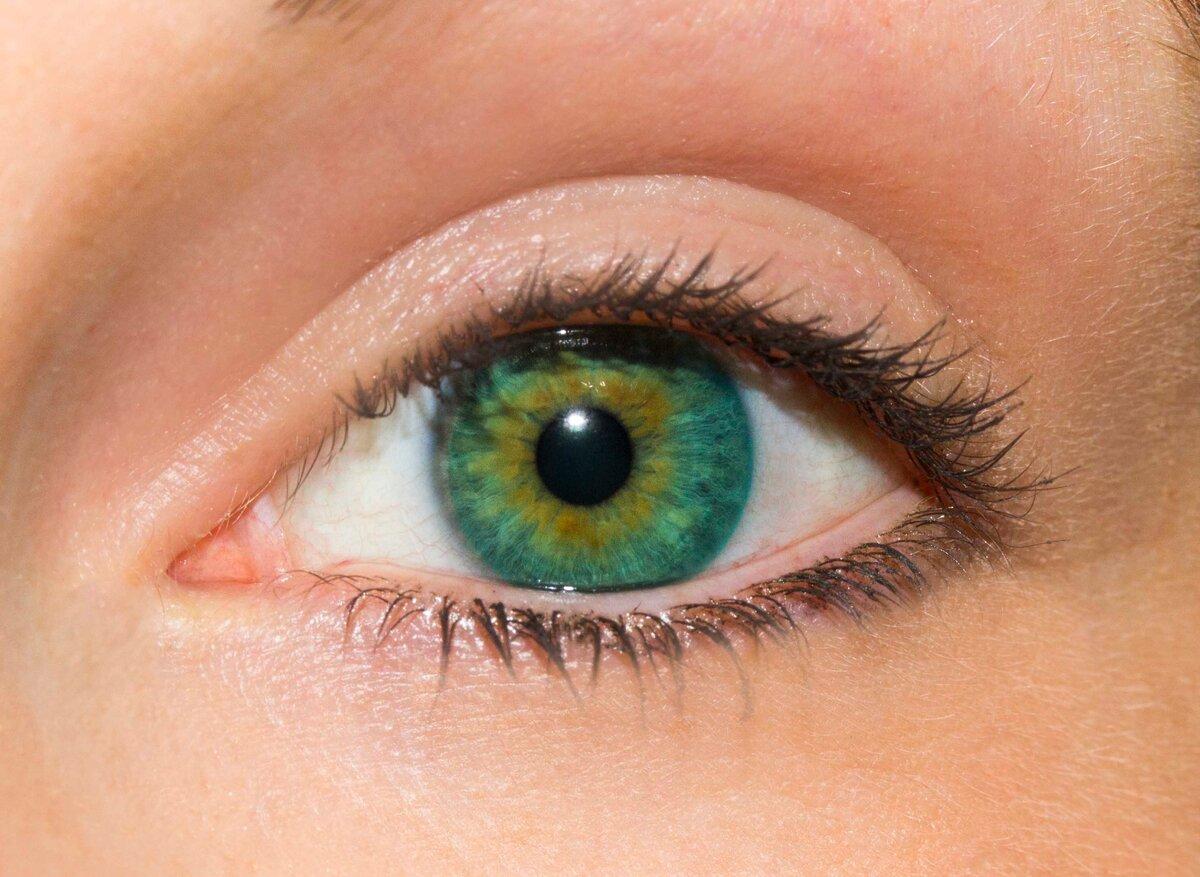 недрах картинки зеленные глаза всего сделать кессон