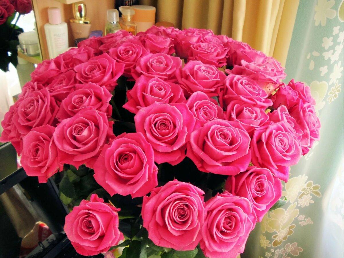 Цветы картинки настоящие
