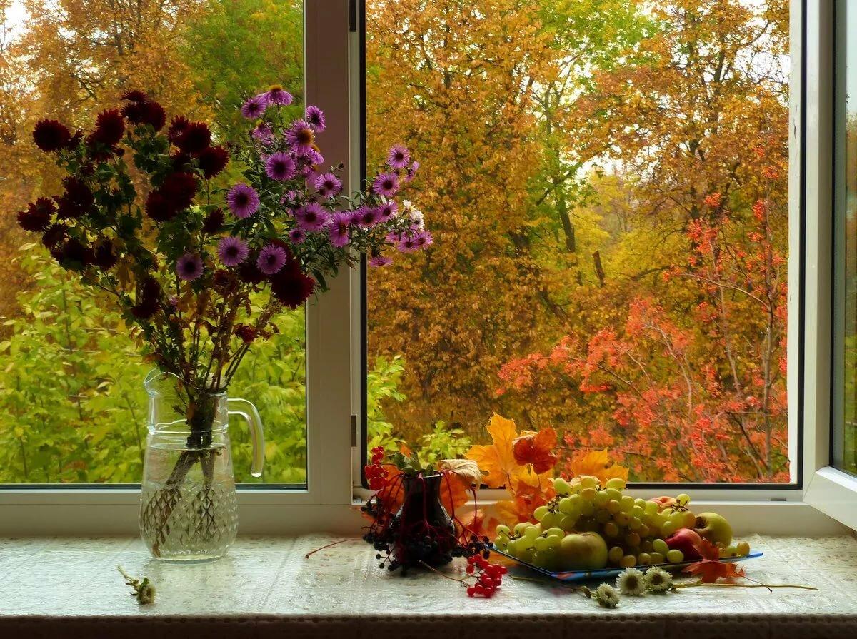 День строителя, открытки осеннее утро вид из окна натуральную