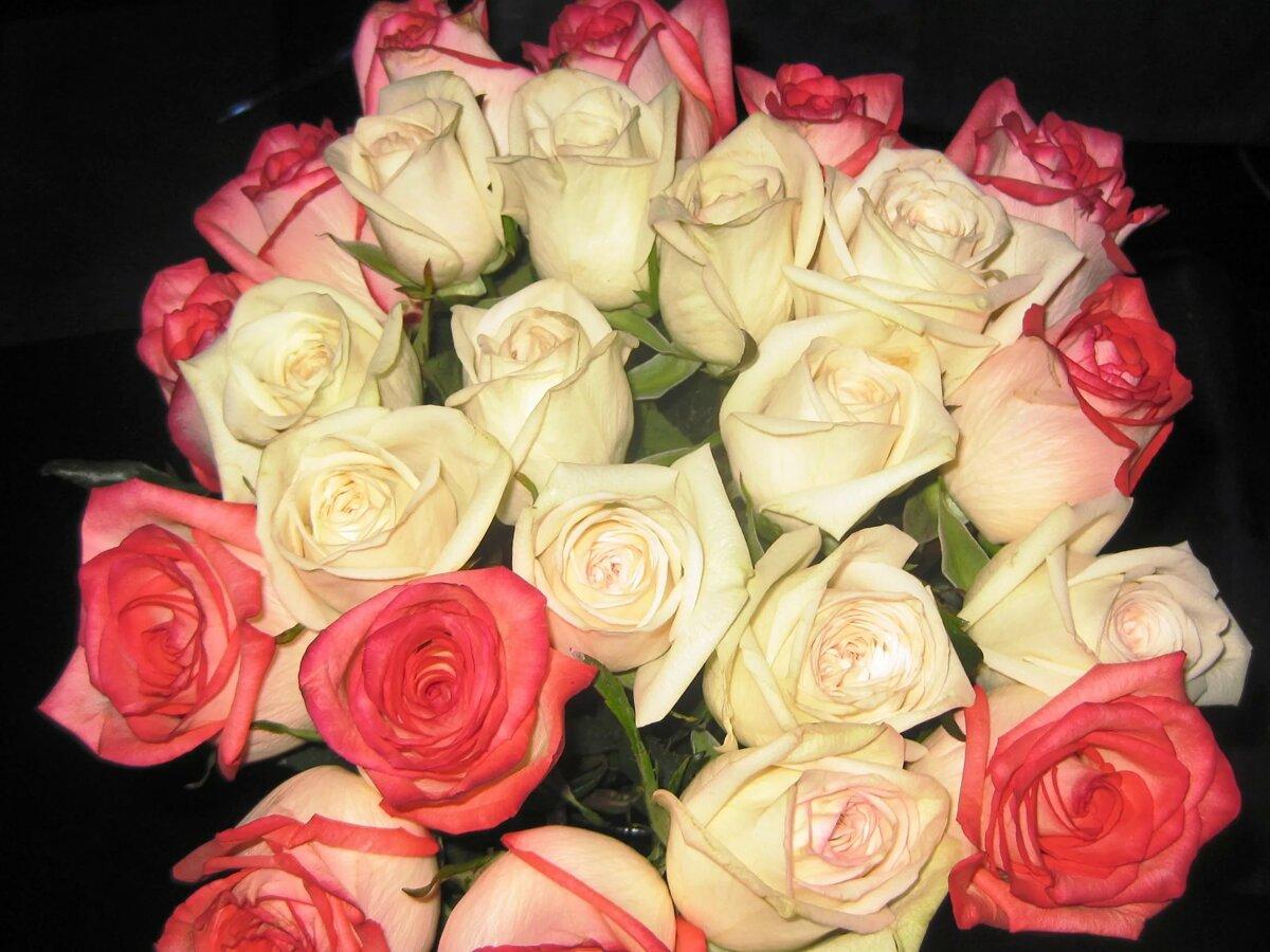 многое букеты роз фотографии в домашних условиях твоєму