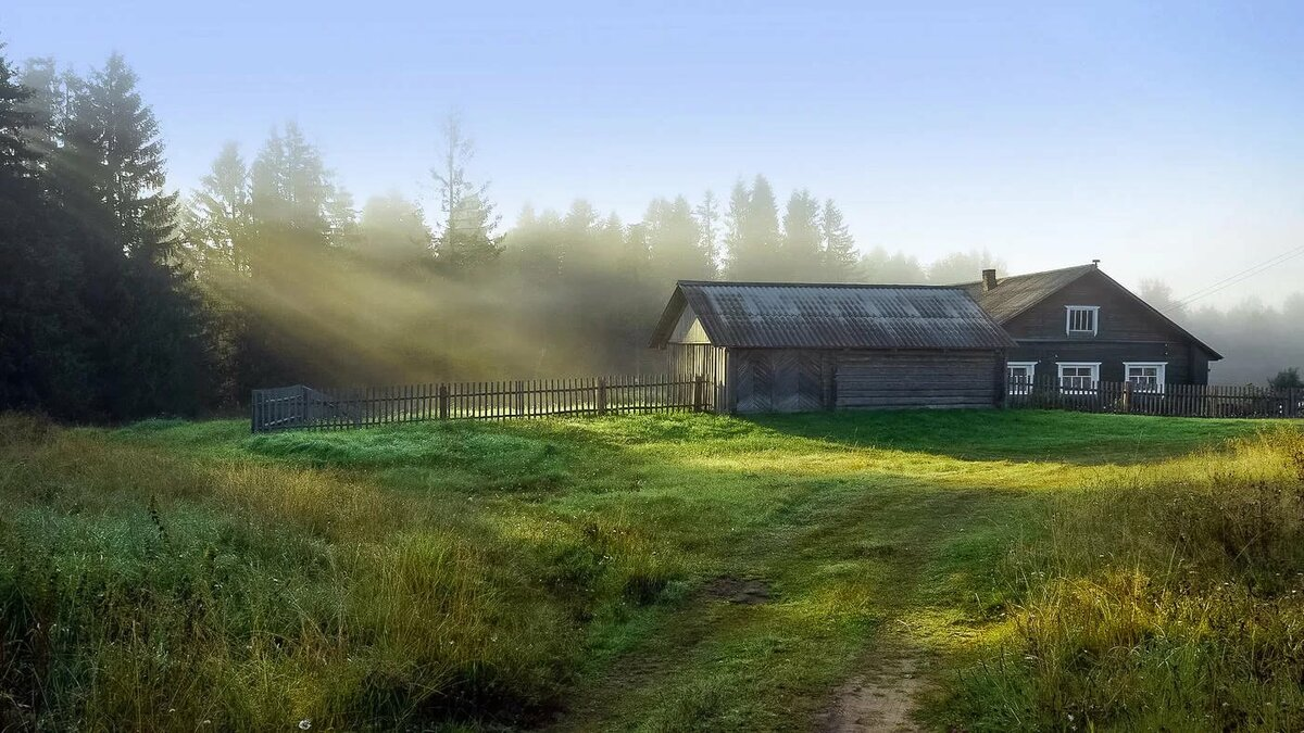 краснодарского картинка летнее утро в деревне величия блеска родителей