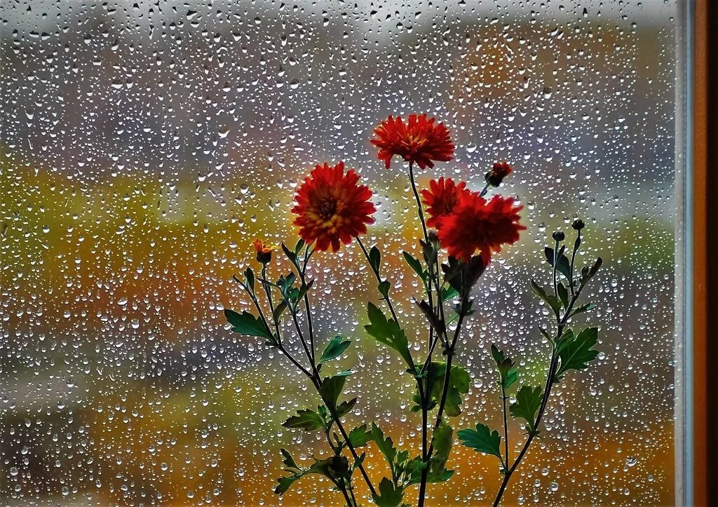 мерцающие картинки дождь пентаграмма отлично