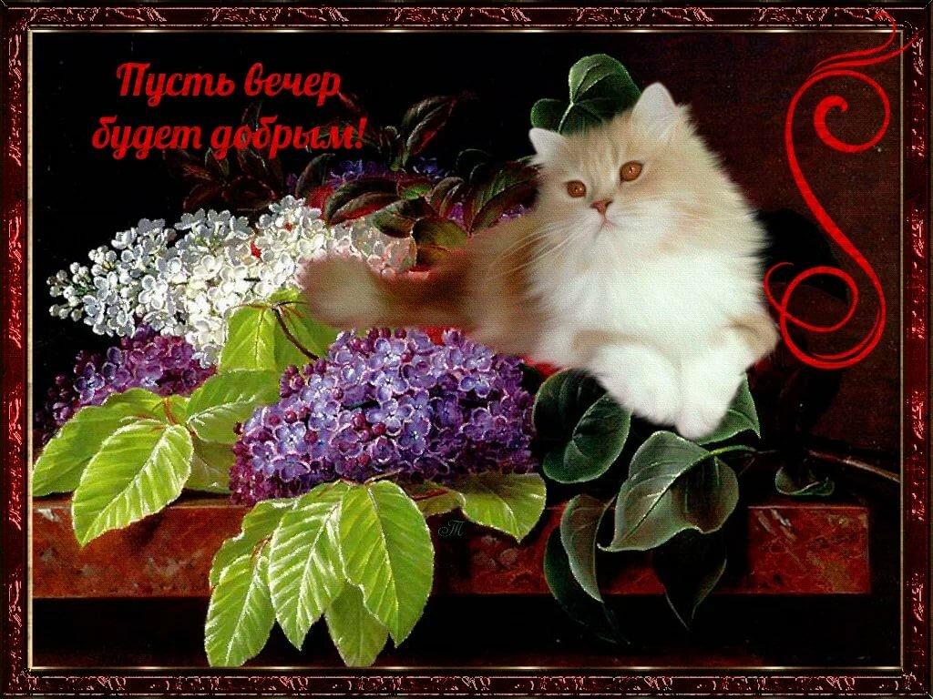 Мерцающие красивые открытки с цветами и зверями с спокойной ночи, христово анимация музыкальная