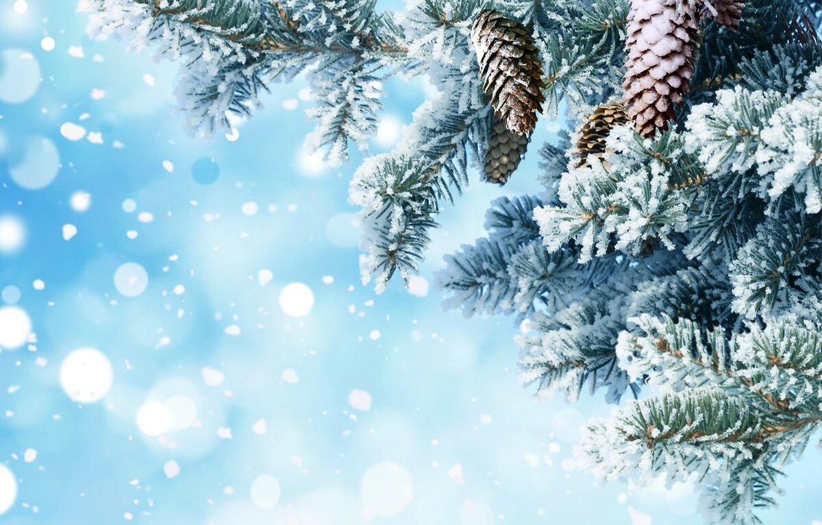 Картинки строгий, зимние для открыток фоны для