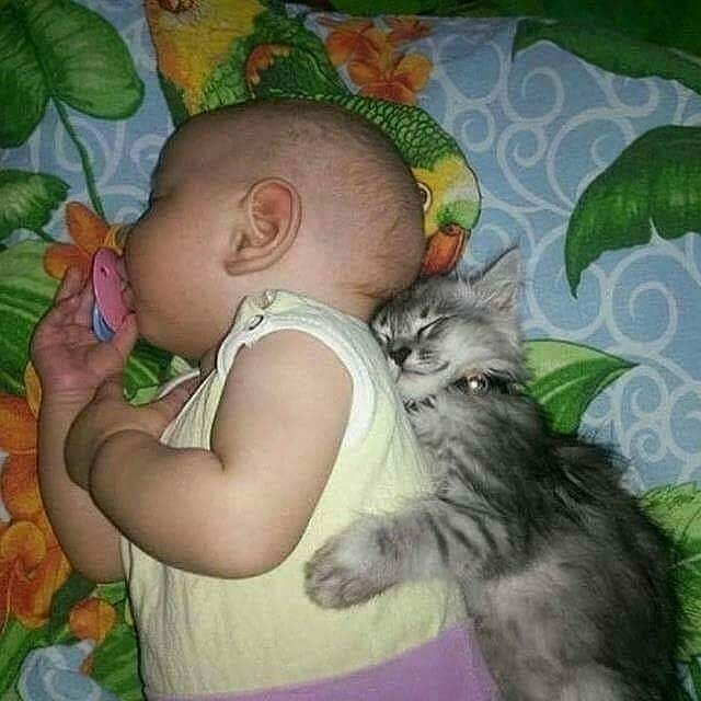 Открытки поздравительные, картинки спящего ребенка с надписями