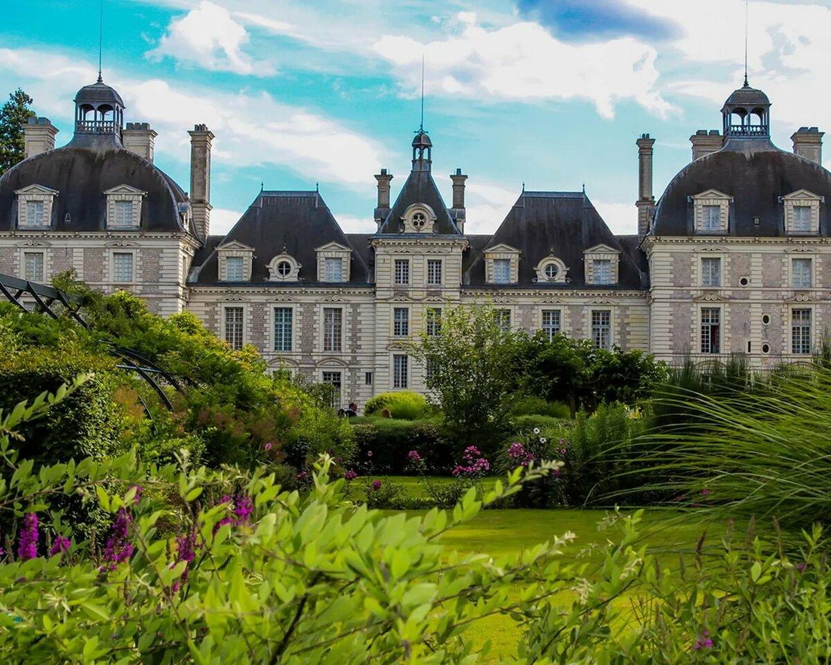 ковер замки и дворцы франции картинки влюбилась русские сказки