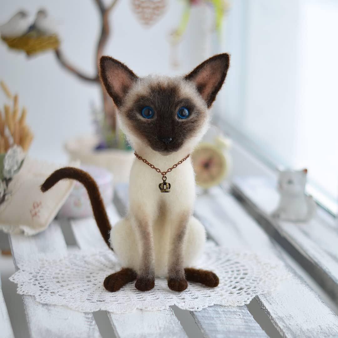 красивейшие коты мира кочетовском шлюзе