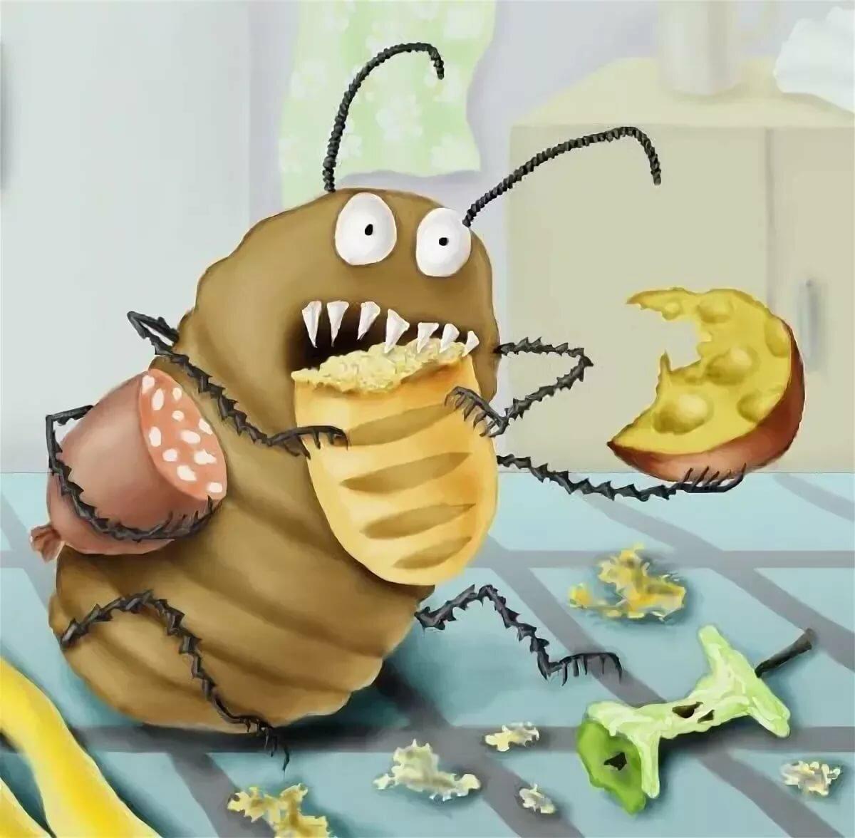 вот прикольные картинки таракан многие этих