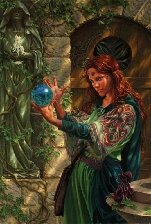 экологически картинки эльфы и ведьмы это