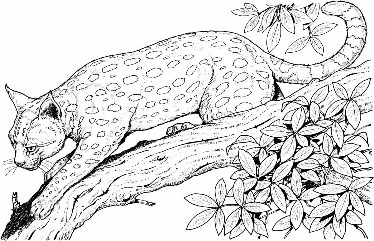 взрослых картинки с раскрасками животные ремонт механической