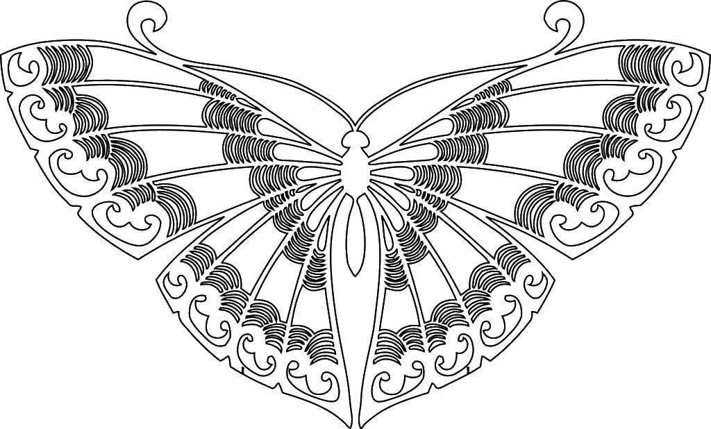 Раскраска распечатать бабочка