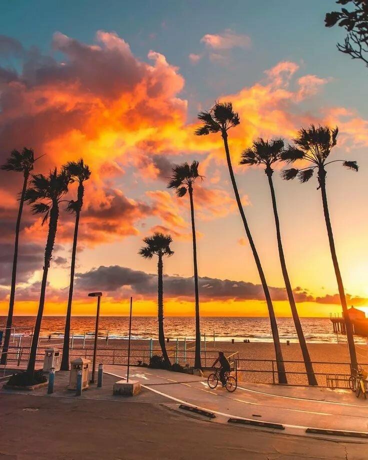 курорт картинки пляж лос-анджелеса емкость
