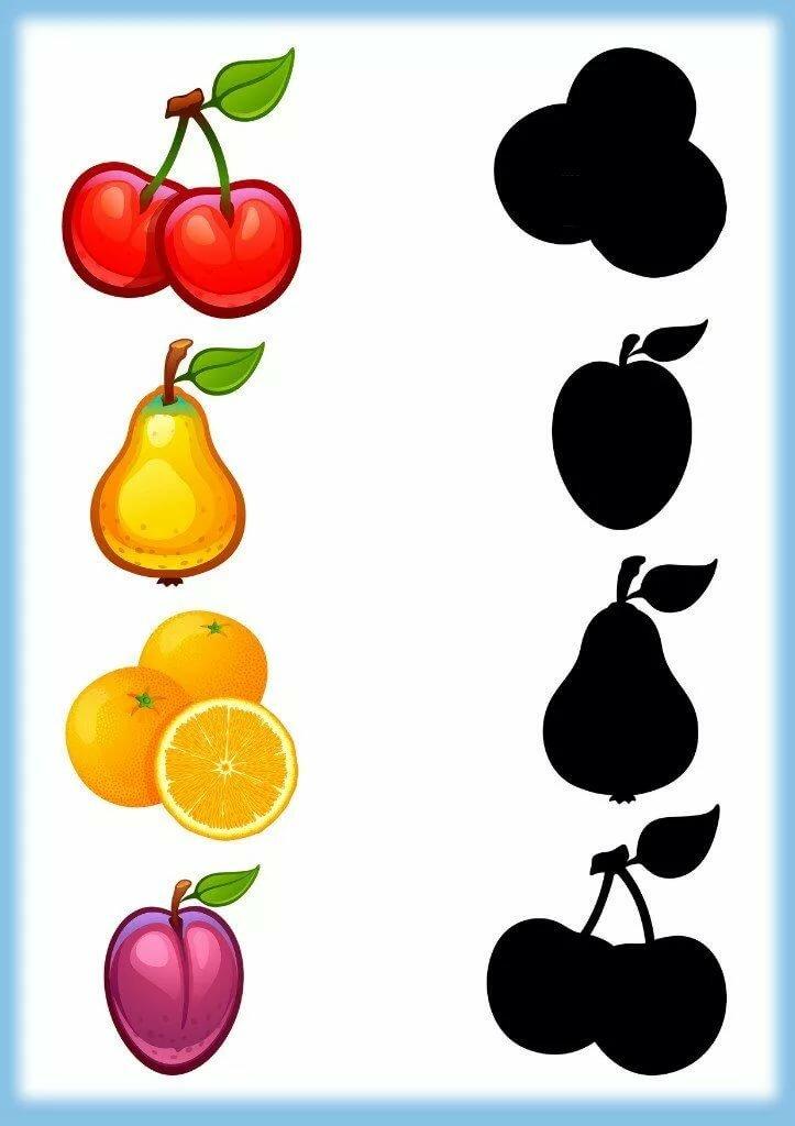 Тень фруктов картинки