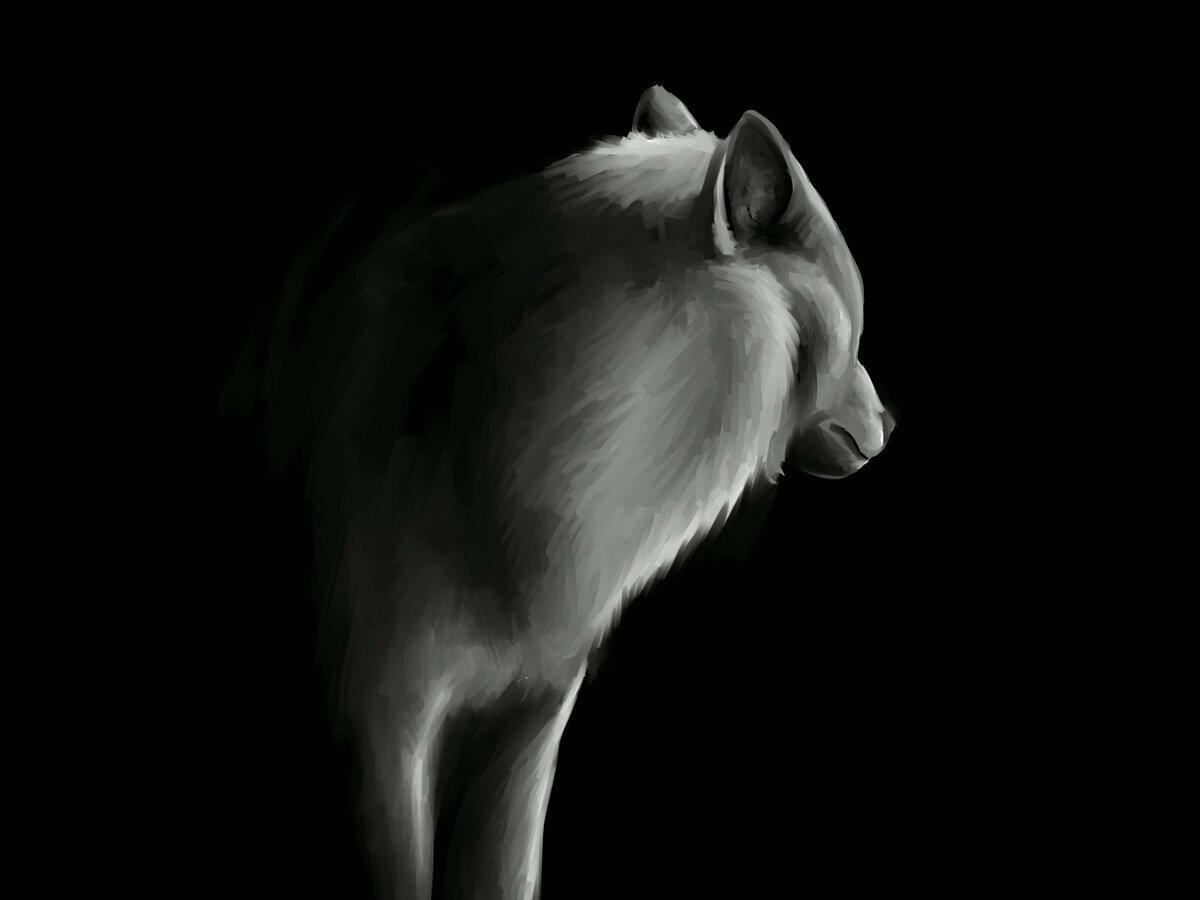 Картинка анимация на аву