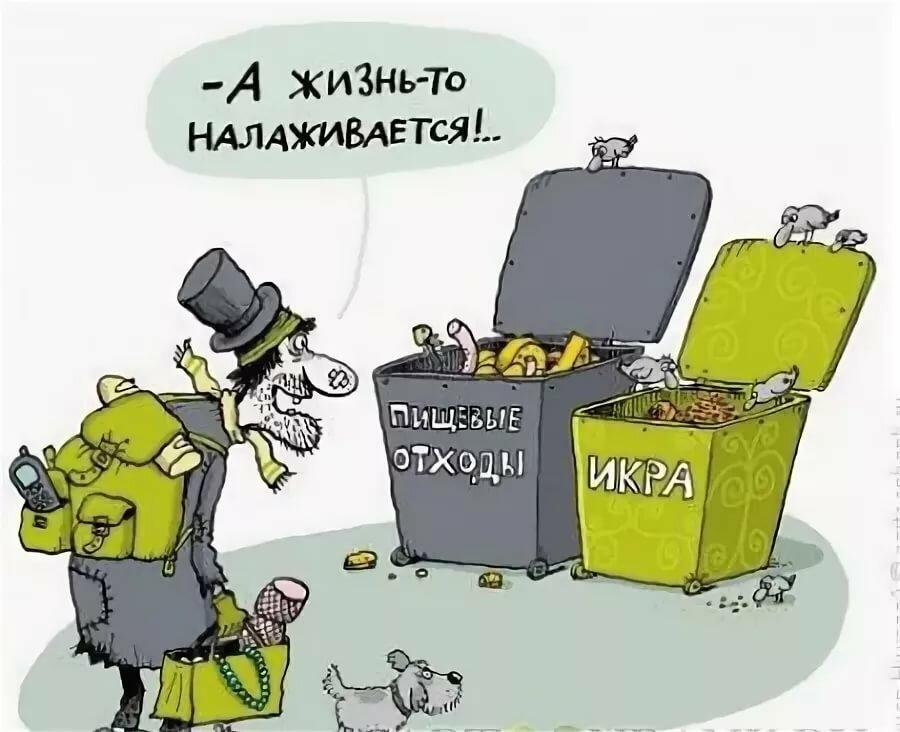тимошенко прикольные картинки жизнь наладится курочки отличаются