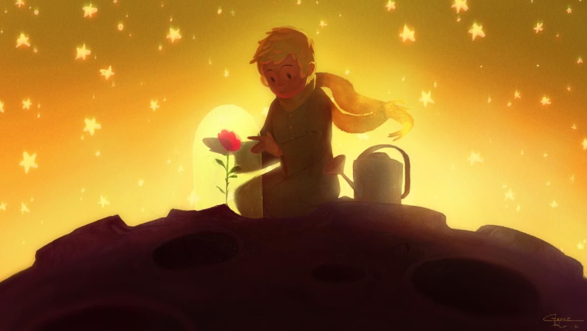 Роза маленького принца картинки