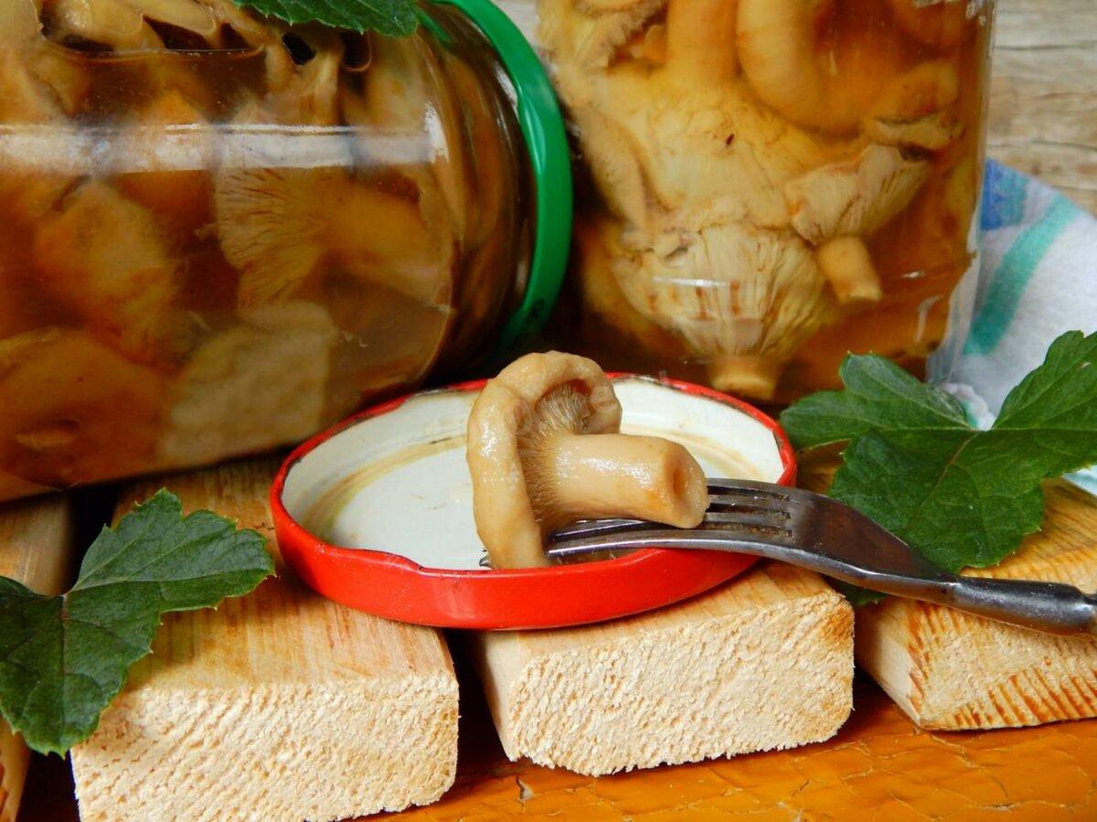 волнушки соленые на зиму рецепт с фото дефект помогали