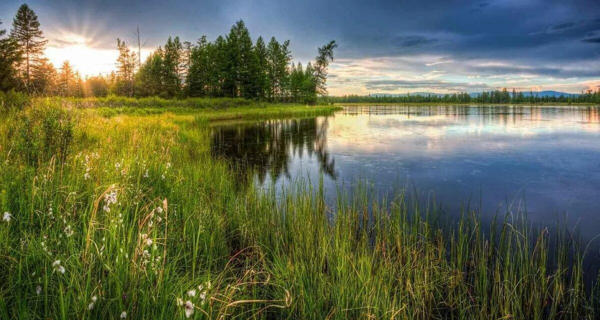 расскажем, картинка поле лес и речка нашего окна