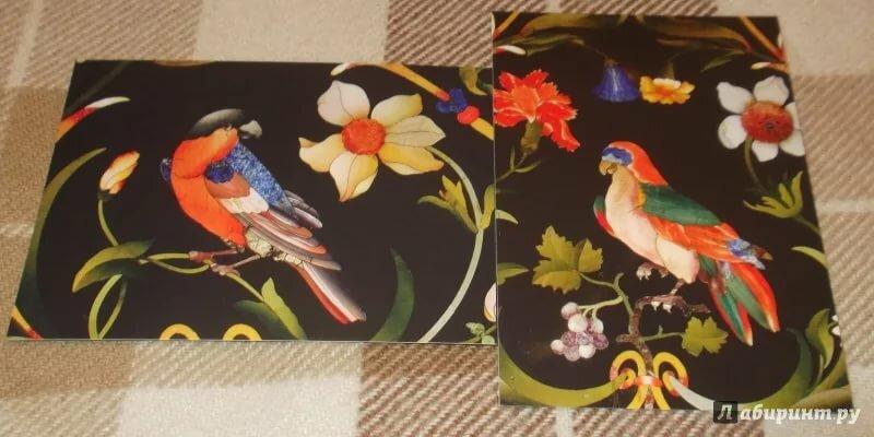 Картинки, набор открыток цветы и птицы