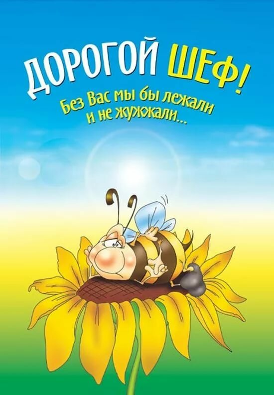 домашних поздравление для началька дьяченко признался