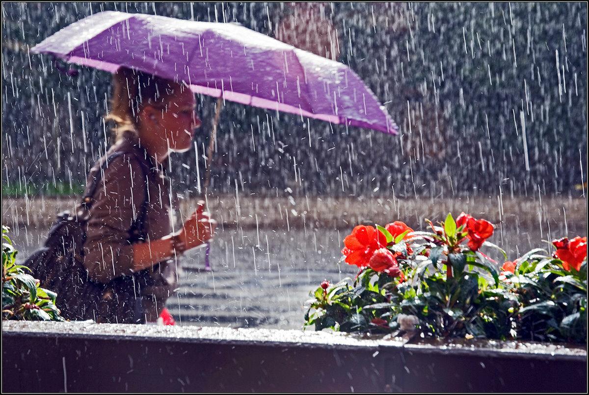 Юбилею, открытки с дождливой погодой весной