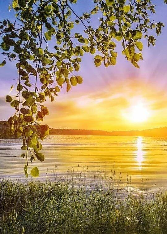 Открытки, картинки природы с надписями доброе утро
