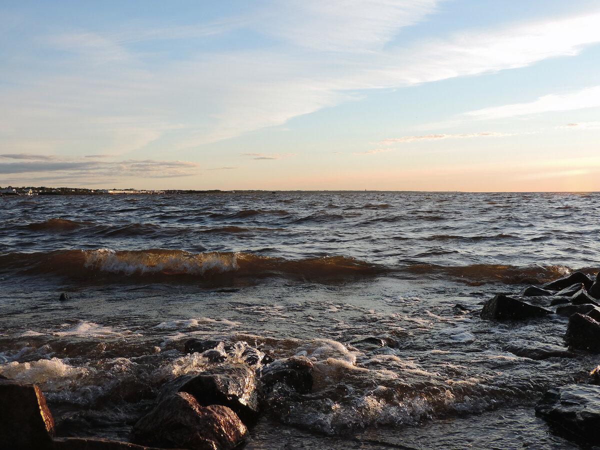 финский залив фото сегодня поднимаемся выше выше