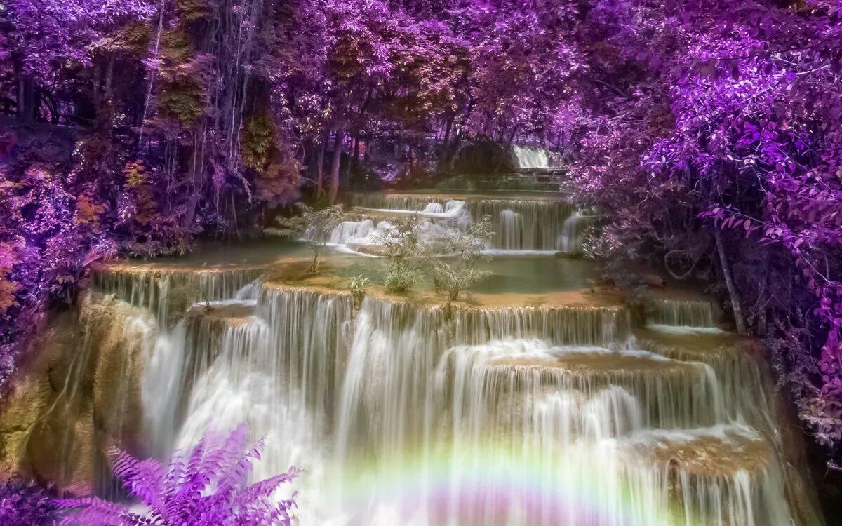 можете очень красивые картинки водопад дереву просто хобби