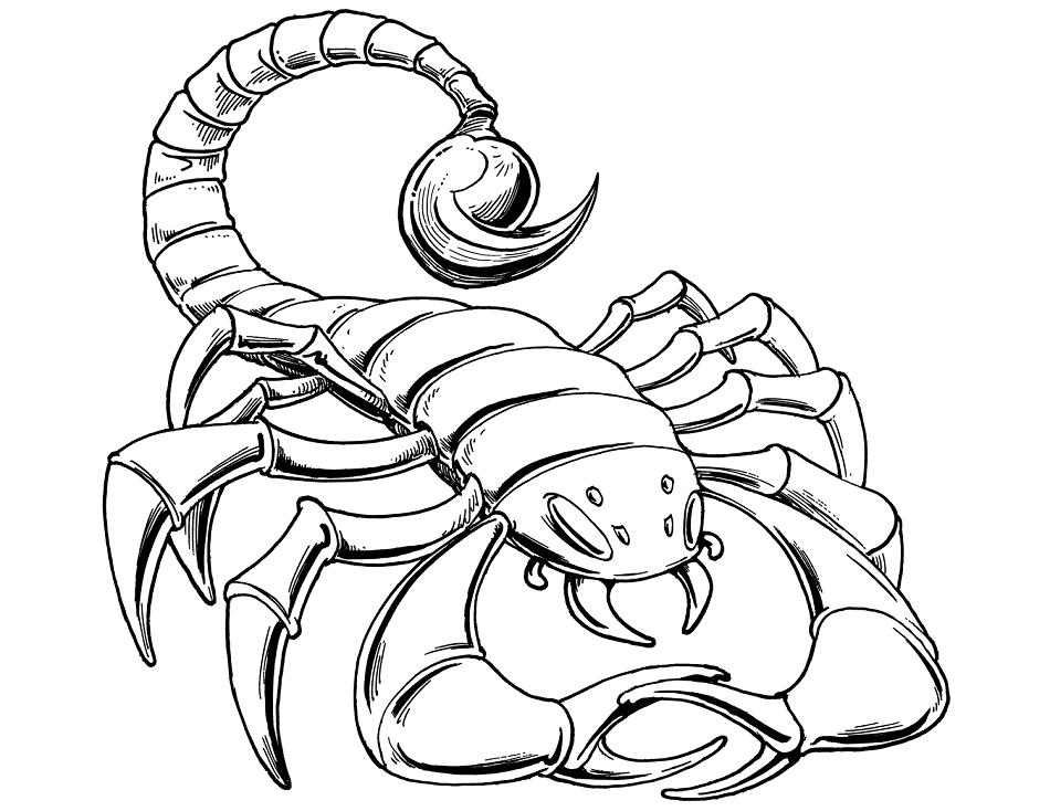 Скорпион картинки для детей, новым годом