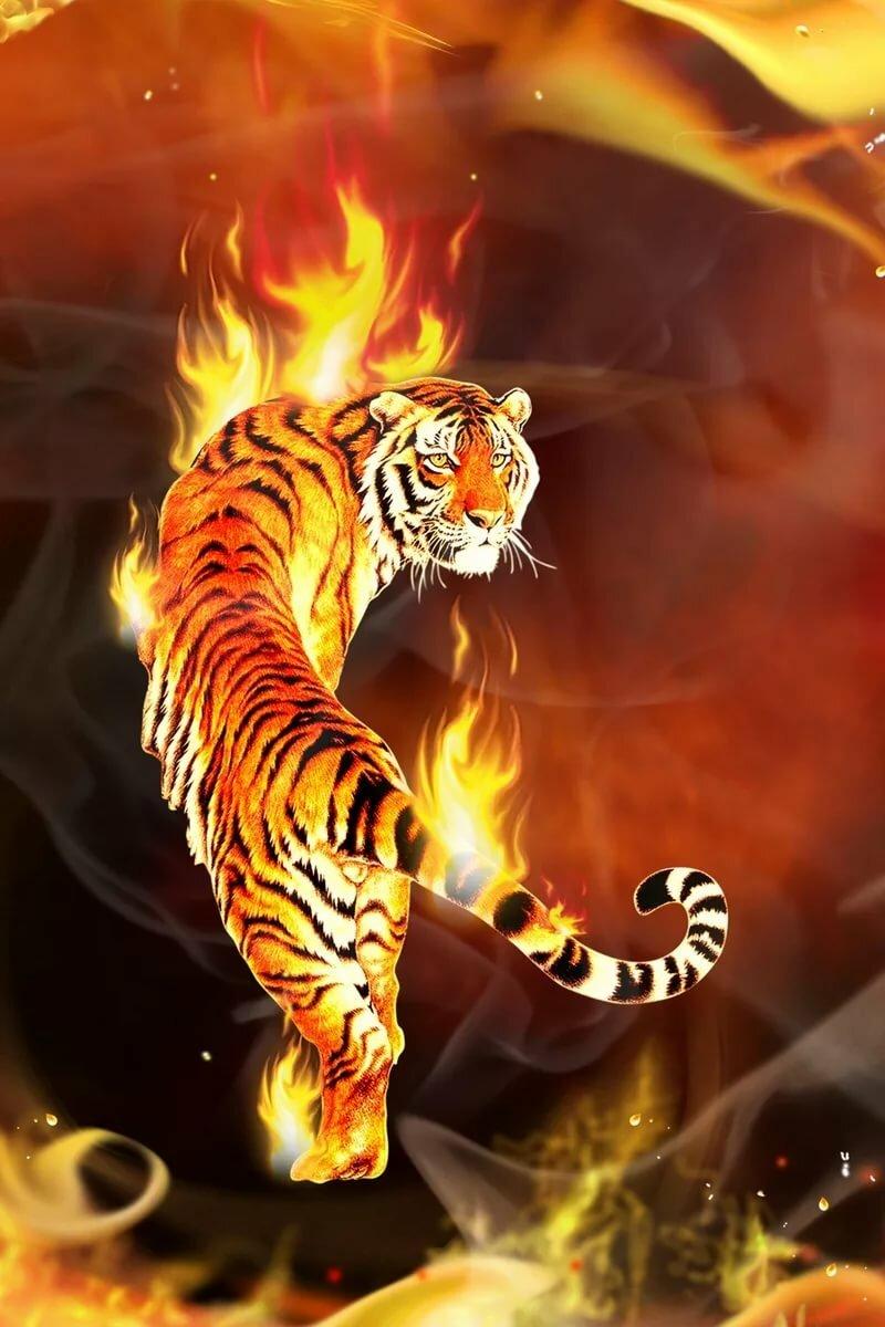 картинки огня и тигров школы