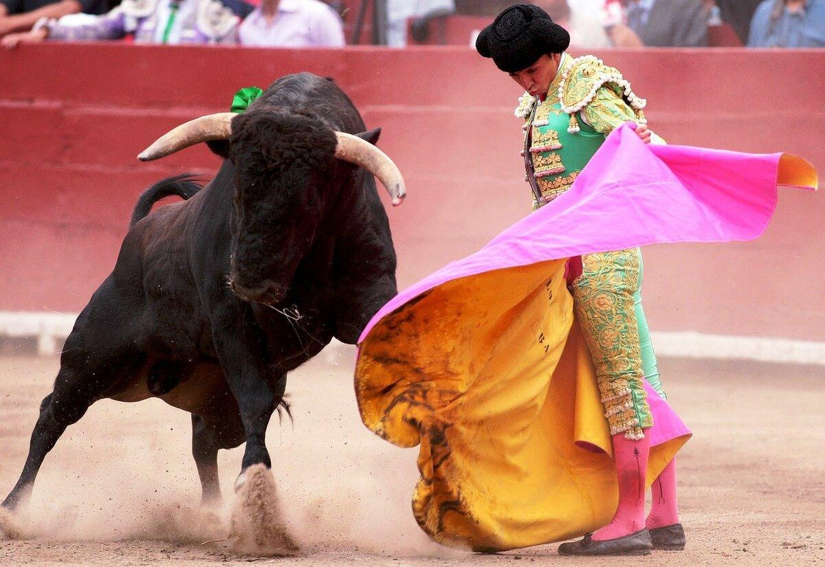 Смешные картинки испания, картинки