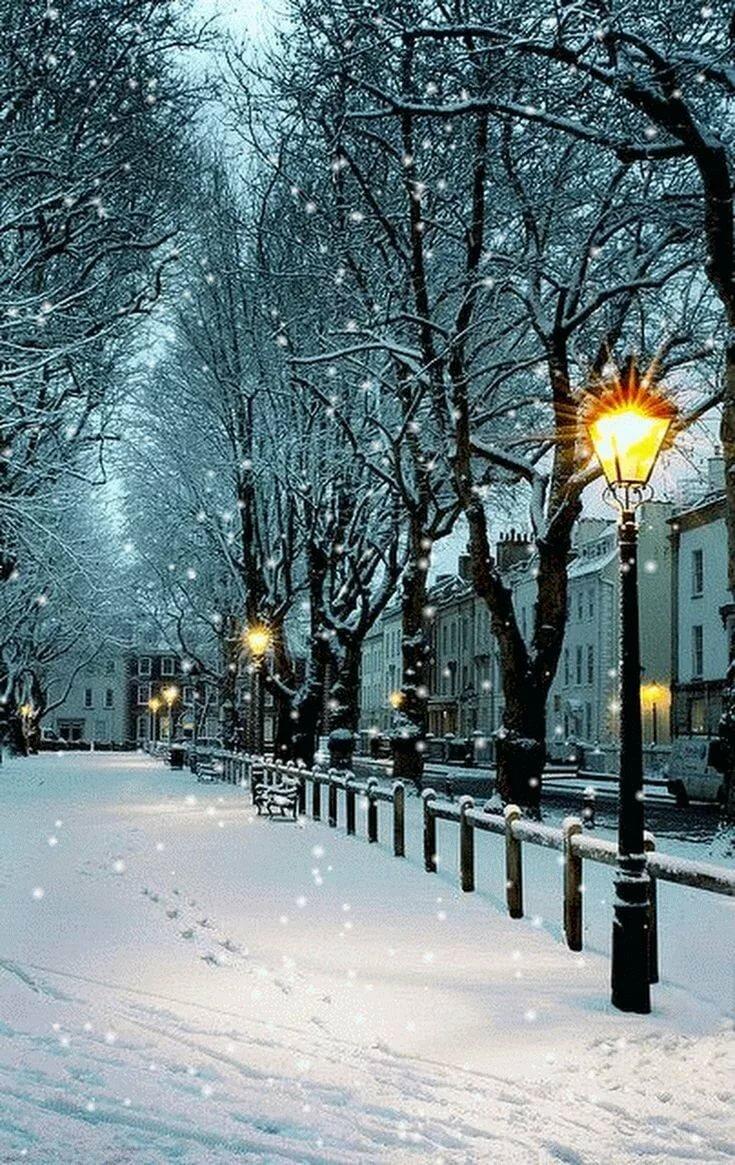 Зимний парк гифка, днем
