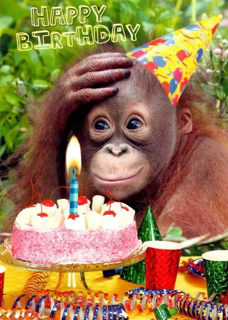 Открытка на день рождения от обезьяны, механическая