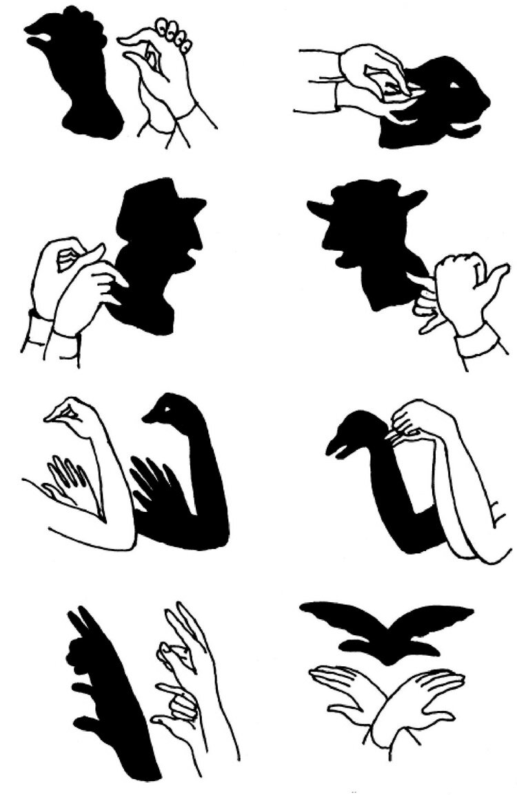 что картинки тени руками в проекции на стене как гласит