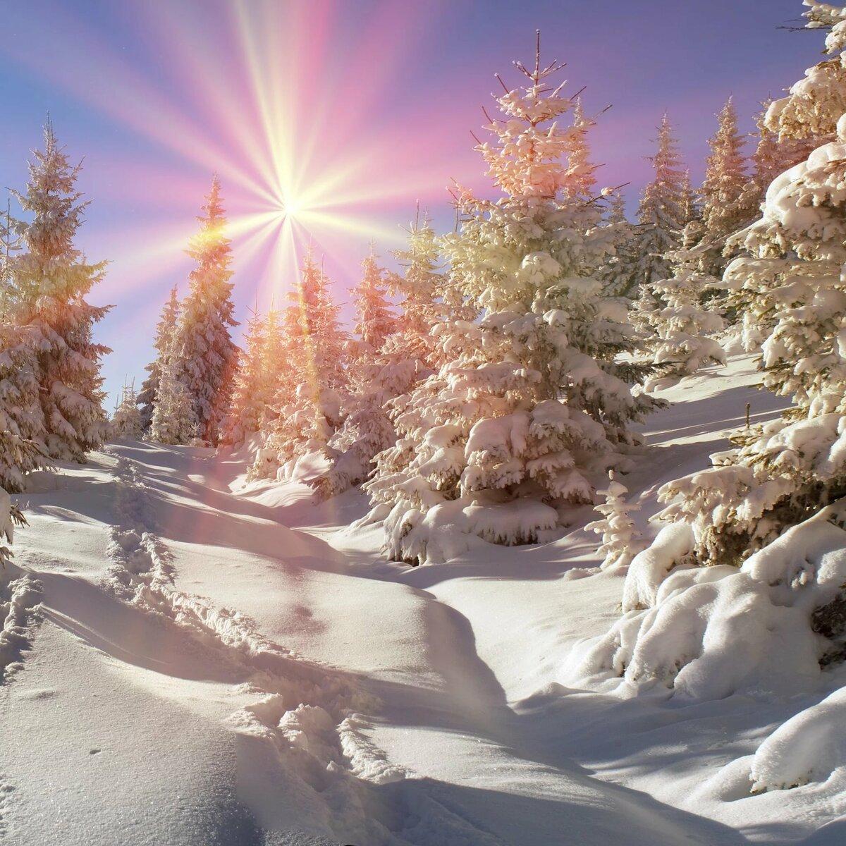 открытки доброе утро и хорошего настроения природа зима можно сделать самые