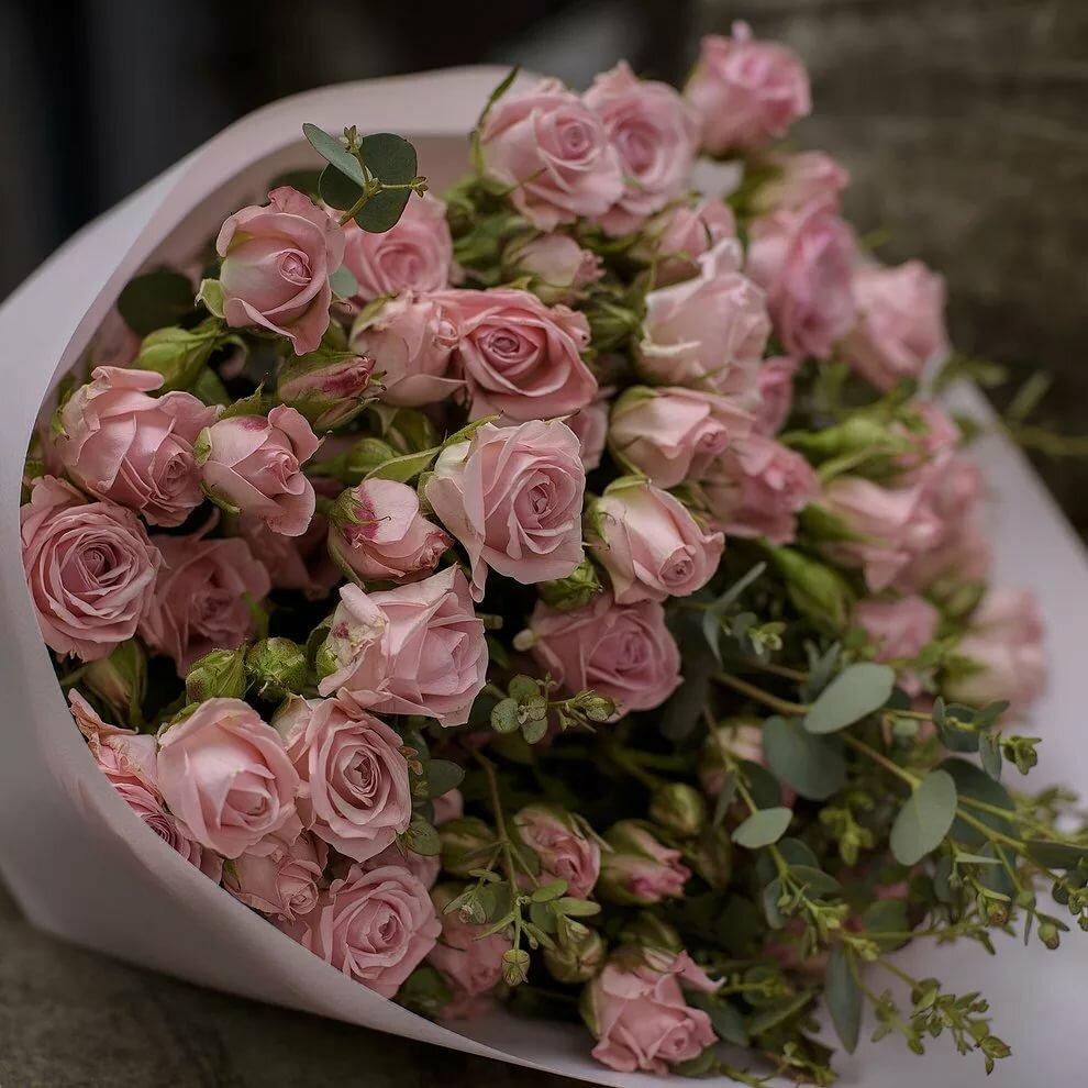 Красивые картинки с розовыми розами на день рождения