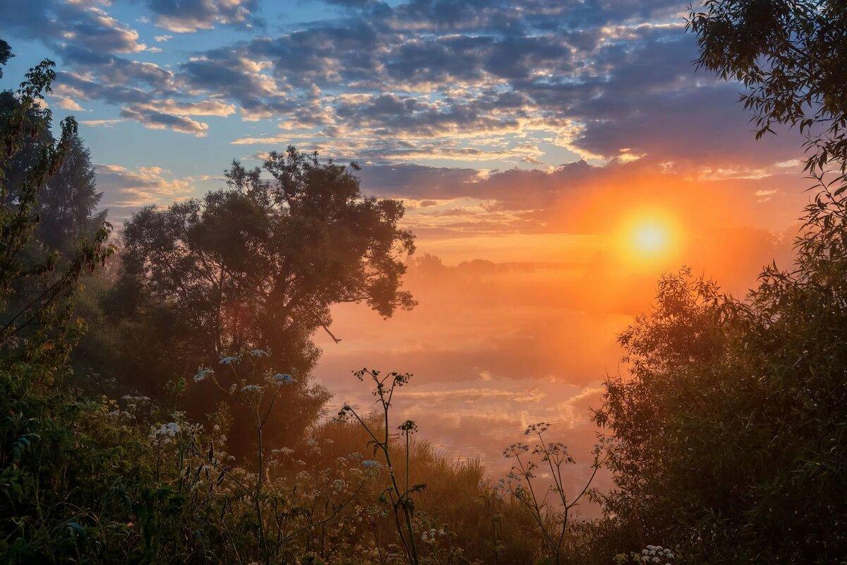 Картинка солнышко рассвет