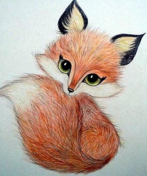 Картинки лис для срисовки простым карандашом