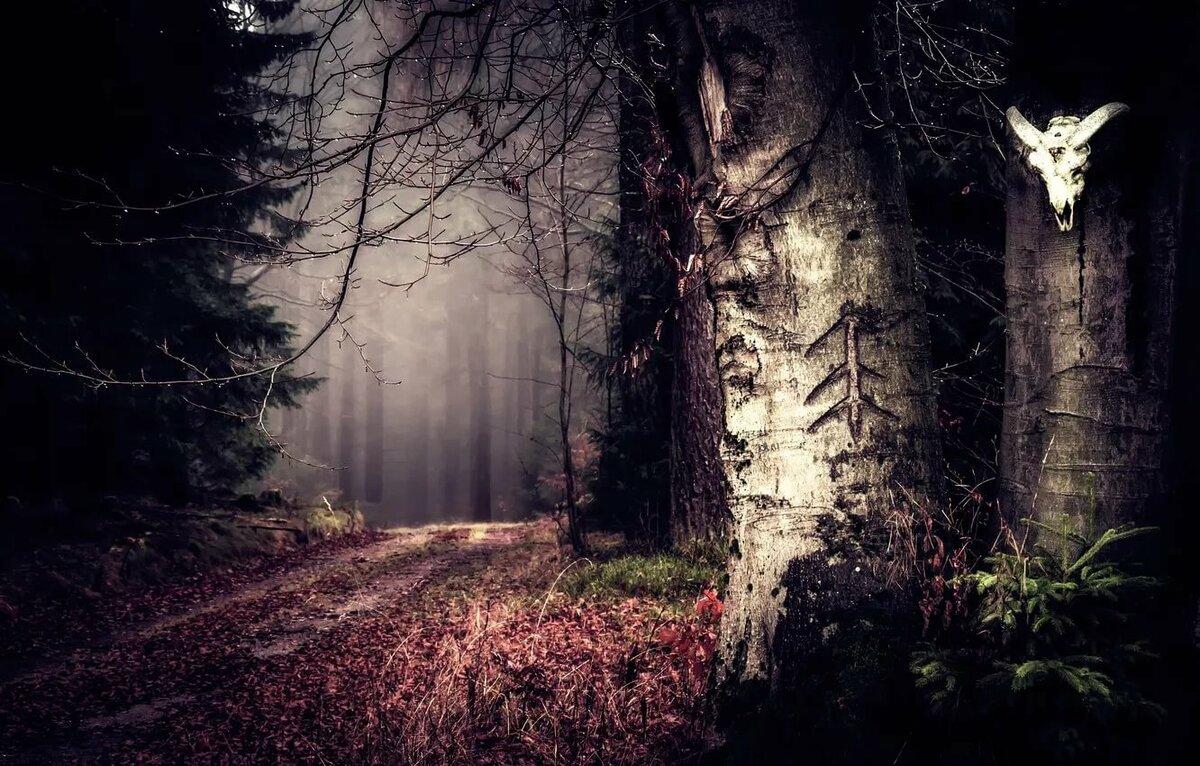 Природа картинки красивые мрачные